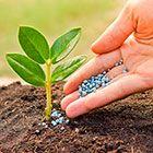 Химия для сада и огорода